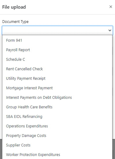 Screenshot of loan portal showing the document type selection drop down.